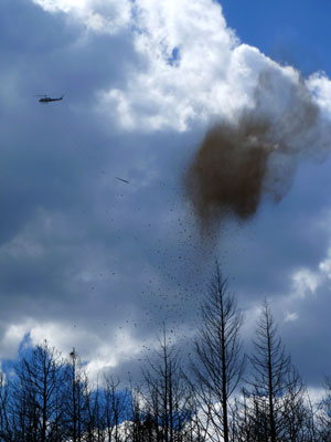 https://rivercrossinginc.tripod.com/firepictures/chopperseed2.jpg