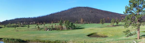 http://rivercrossinginc.tripod.com/firepictures/meadowgrn.jpg