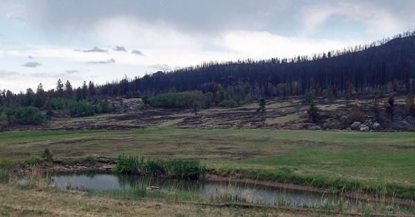https://rivercrossinginc.tripod.com/firepictures/meadowscorch.jpg