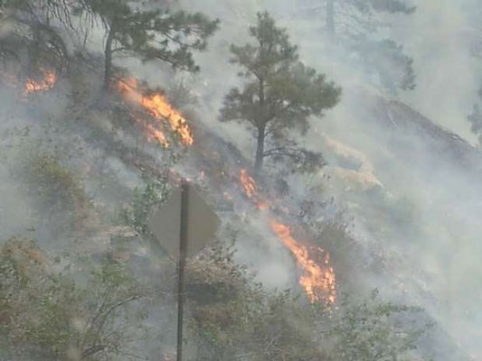 http://rivercrossinginc.tripod.com/firepictures/posseflames.jpg