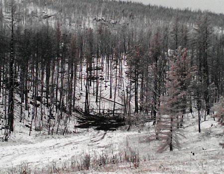 http://rivercrossinginc.tripod.com/firepictures/siltdam.jpg